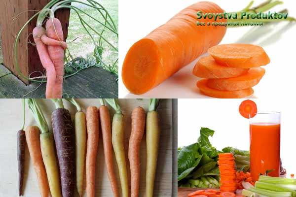 состав, витамины моркови