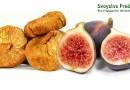 Полезные свойства и противопоказания инжира