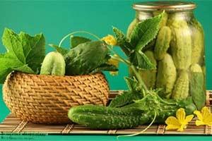 Огурцы: 5 преимуществ для здоровья