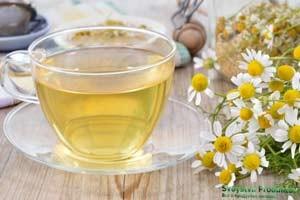 Ромашковый чай. Выбор сырья