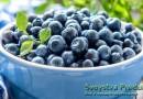 Черника: калорийность, польза и вред для здоровья
