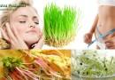Чем так полезна пророщенная пшеница для организма и в чем ее вред ?