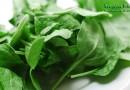 Полезные свойства и вред шпината для здоровья