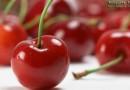 Полезные свойства вишни и противопоказания к употреблению