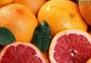 Полезные свойства и вред грейпфрута для здоровья человека