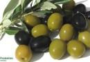 Полезные свойства и вред маслин для здоровья