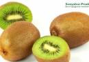 Свойства киви: польза и вред фрукта для организма