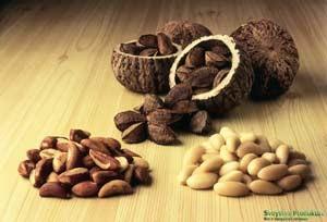 Полезніе свойства бразильского ореха
