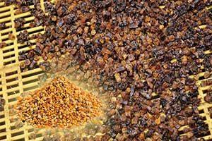 Состав перги пчелиной